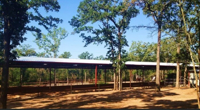 Arena in wooded area by Covered Arena (TM) and Dressage Arenas